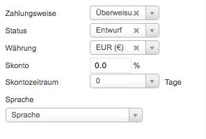 Zahlungspräferenz, Skontoinformationen, Status, Währung und Sprache